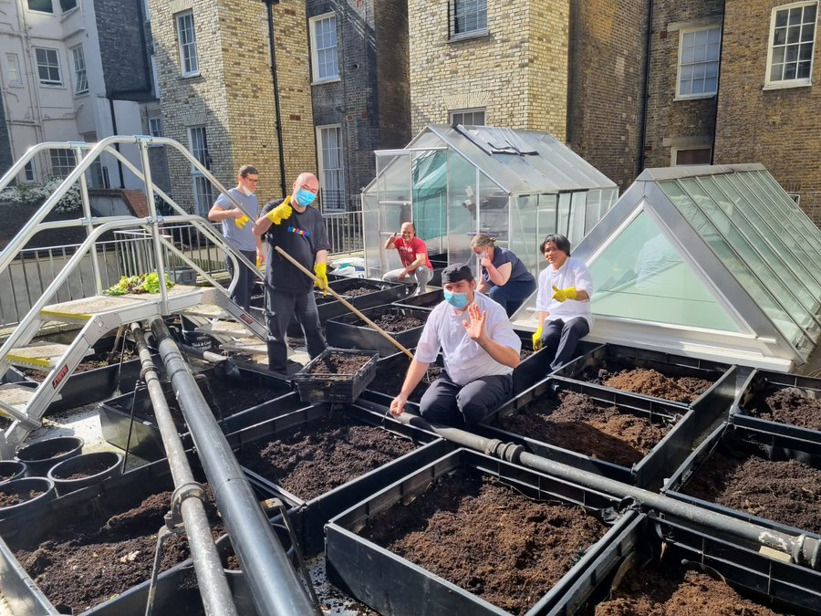 Sustainable roof garden at Victory Services Club
